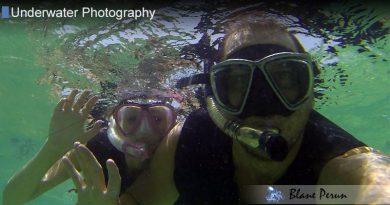 Aruba Dive