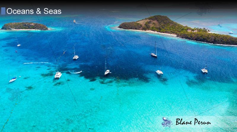 Caribbean Sea At Theseaorg