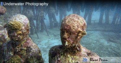 Grenada Dive