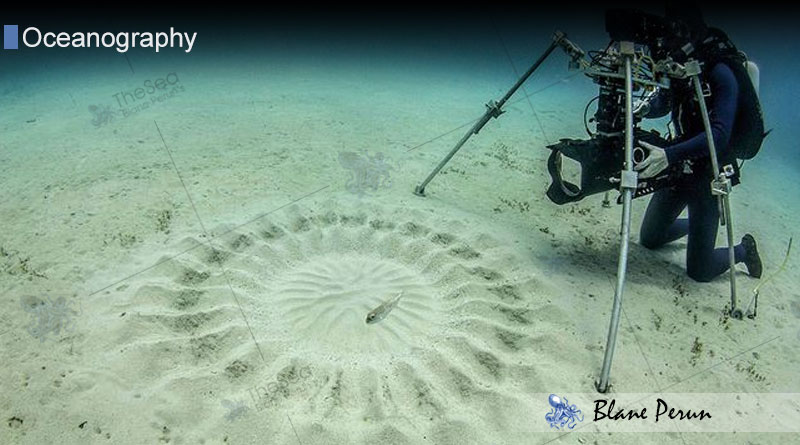 Underwater Circles from Blane Peruns TheSea