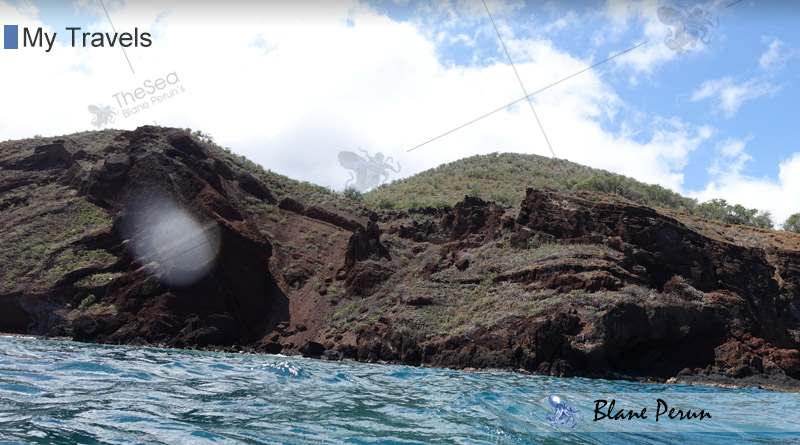 My Travels To Hawaii Maui from Blane Peruns TheSea.Org