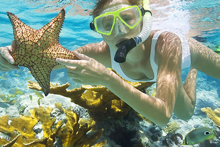 Punta Cana Snorkeling From Blane Peruns Thesea