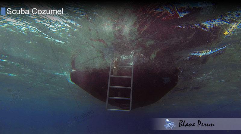 Scuba Diving Cozumel 4/13