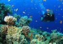 Scuba Diving Puerto Rico