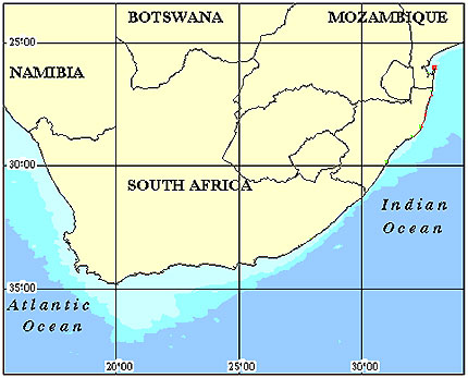 South Africa Coral Reef Maps from Blane Peruns TheSea