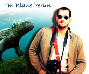 Welcome to TheSea